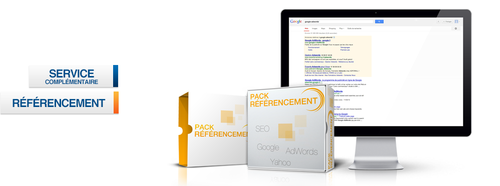 Pack Referencement web